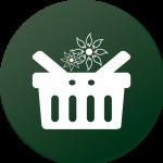 Proflora flower webshop